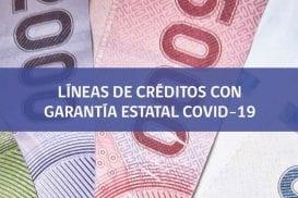Subsecretario de Hacienda explicó la ley que otorga créditos con garantía Fogape a pymes del sector comercio
